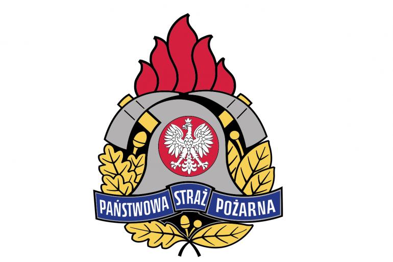 psp-logo-770×513